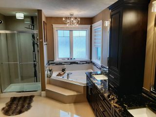 Photo 16: 2549 AMERONGEN Crescent in Edmonton: Zone 55 House for sale : MLS®# E4179553