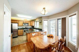 Photo 11: 270 BULYEA Road in Edmonton: Zone 14 House for sale : MLS®# E4192184