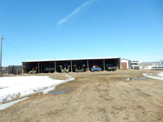 Photo 4: 49049 RR 15: Rural Leduc County Manufactured Home for sale : MLS®# E4194249
