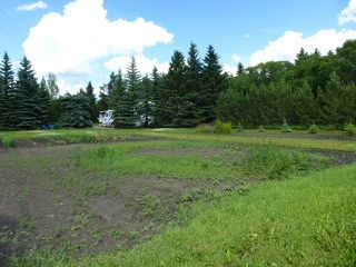 Photo 40: 1 HORNER Drive: Rural Sturgeon County House for sale : MLS®# E4205517