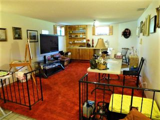 Photo 24: 1 HORNER Drive: Rural Sturgeon County House for sale : MLS®# E4205517