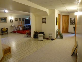 Photo 23: 1 HORNER Drive: Rural Sturgeon County House for sale : MLS®# E4205517