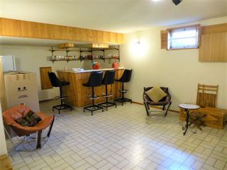 Photo 26: 1 HORNER Drive: Rural Sturgeon County House for sale : MLS®# E4205517