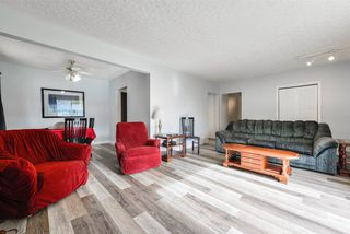 Photo 6:  in Edmonton: Zone 22 House for sale : MLS®# E4215984