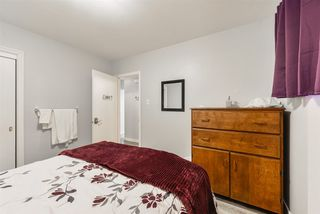 Photo 16:  in Edmonton: Zone 22 House for sale : MLS®# E4215984