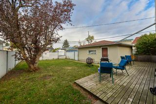 Photo 32:  in Edmonton: Zone 22 House for sale : MLS®# E4215984