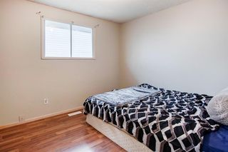 Photo 15: 170 Templevale Road NE in Calgary: Temple Semi Detached for sale : MLS®# A1041633