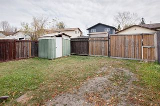 Photo 28: 170 Templevale Road NE in Calgary: Temple Semi Detached for sale : MLS®# A1041633
