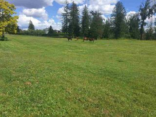 Photo 1: 558 248 STREET in Langley: Agriculture for sale : MLS®# C8034821