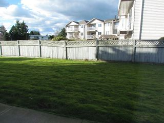 Photo 10: 103 33225 Old Yale Road in Abbotsford: Condo for rent