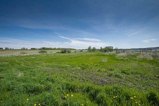 Photo 47: 53053 RGE RD 225: Rural Strathcona County House for sale : MLS®# E4199381