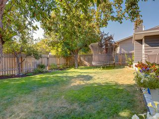 Photo 48: 519 PARKVALLEY Road SE in Calgary: Parkland Detached for sale : MLS®# A1031472