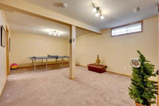 Photo 33: 63 Hampstead Terrace NW in Calgary: Hamptons Detached for sale : MLS®# A1050804