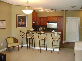 Photo 3: 429 20 DISCOVERY RIDGE Close SW in CALGARY: Discovery Ridge Condo for sale (Calgary)  : MLS®# C3538319