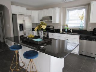 Photo 5: 1 Oakdale Place in St. Albert: House for rent