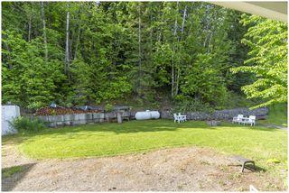 Photo 33: 3502 Eagle Bay Road: Eagle Bay House for sale (Shuswap Lake)  : MLS®# 10185719