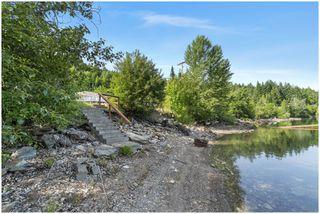 Photo 46: 3502 Eagle Bay Road: Eagle Bay House for sale (Shuswap Lake)  : MLS®# 10185719