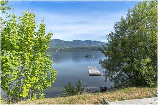 Photo 42: 3502 Eagle Bay Road: Eagle Bay House for sale (Shuswap Lake)  : MLS®# 10185719