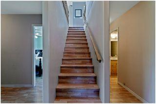 Photo 29: 3502 Eagle Bay Road: Eagle Bay House for sale (Shuswap Lake)  : MLS®# 10185719