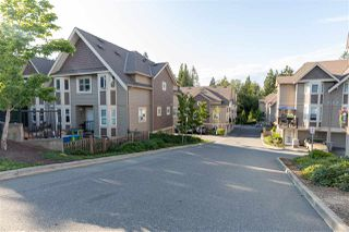 """Photo 1: 24 33313 GEORGE FERGUSON Way in Abbotsford: Central Abbotsford Townhouse for sale in """"Cedar Lane"""" : MLS®# R2389130"""