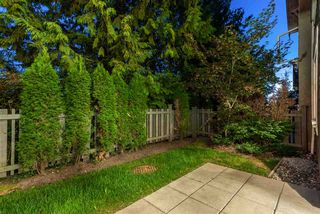 """Photo 18: 20 3400 DEVONSHIRE Avenue in Coquitlam: Burke Mountain Townhouse for sale in """"COLBORNE LANE"""" : MLS®# R2403314"""