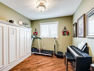 Photo 17: 217 Mt Aberdeen Circle SE in Calgary: McKenzie Lake Detached for sale : MLS®# A1030785