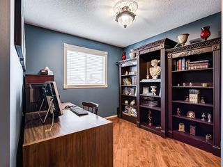 Photo 15: 217 Mt Aberdeen Circle SE in Calgary: McKenzie Lake Detached for sale : MLS®# A1030785