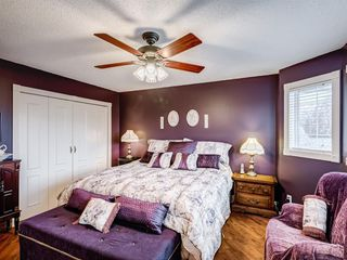 Photo 23: 217 Mt Aberdeen Circle SE in Calgary: McKenzie Lake Detached for sale : MLS®# A1030785
