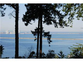 Photo 13: 731 ENGLISH BLUFF Road in Tsawwassen: English Bluff House for sale : MLS®# V1019032