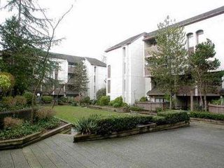 "Photo 8: 14 365 GINGER DR in New Westminster: Fraserview NW Townhouse for sale in ""FRASER MEWS"" : MLS®# V527473"