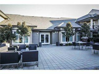 Photo 18: # 317 18818 68TH AV in Surrey: Clayton Condo for sale (Cloverdale)  : MLS®# F1438129