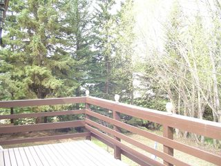 Photo 24: 69 Schultz Dr. in Rural sturgeon County: Namao Ridge House for sale (Sturgeon)