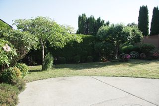 Photo 37: 31142 Sidoni Avenue in Abbotsford: Abbotsford West House for sale : MLS®# R2272343