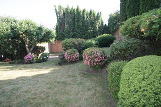 Photo 36: 31142 Sidoni Avenue in Abbotsford: Abbotsford West House for sale : MLS®# R2272343