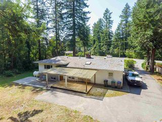 Main Photo: 8880 HARVIE Road in Surrey: Port Kells House for sale (North Surrey)  : MLS®# R2416520