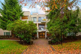 Photo 5: 207 830 E 7TH Avenue in Vancouver: Mount Pleasant VE Condo for sale (Vancouver East)  : MLS®# R2508899