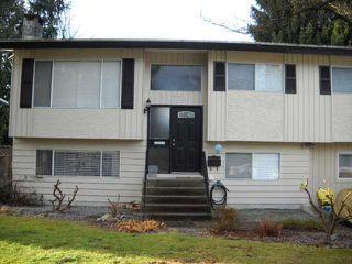 Photo 1: 11771 GRAVES Street in Maple Ridge: Southwest Maple Ridge House for sale : MLS®# V921773