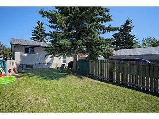 Photo 14: 3931 14 Avenue NE in CALGARY: Marlborough Residential Detached Single Family for sale (Calgary)  : MLS®# C3626019