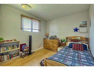 Photo 10: 3931 14 Avenue NE in CALGARY: Marlborough Residential Detached Single Family for sale (Calgary)  : MLS®# C3626019