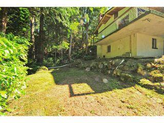 Photo 14: 499 VENTURA Crescent in North Vancouver: Upper Delbrook House for sale : MLS®# V1078211