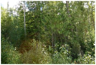 Photo 32:  in Eagle Bay: Vacant Land for sale : MLS®# 10105920