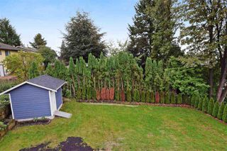 Photo 19: 1984 PETERSON AVENUE in Coquitlam: Cape Horn House for sale : MLS®# R2007064