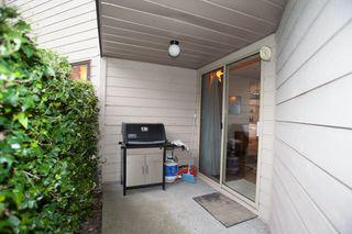 Photo 5: A109 40100 WILLOW CRESCENT in Squamish: Garibaldi Estates Condo for sale : MLS®# R2053513