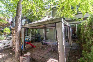 Photo 18: 17 11757 236 STREET in Maple Ridge: Cottonwood MR Townhouse for sale : MLS®# R2092937