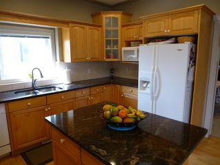 Photo 10: 675 HENDERSON Street in Edmonton: Zone 14 House for sale : MLS®# E4170694