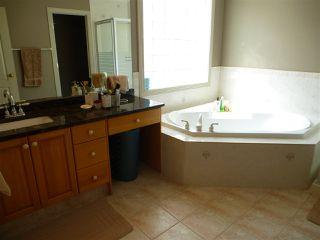Photo 18: 675 HENDERSON Street in Edmonton: Zone 14 House for sale : MLS®# E4170694