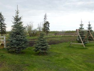 Photo 42: 48354 RR 255: Rural Leduc County House for sale : MLS®# E4198536