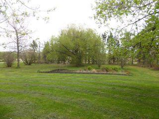 Photo 30: 48354 RR 255: Rural Leduc County House for sale : MLS®# E4198536