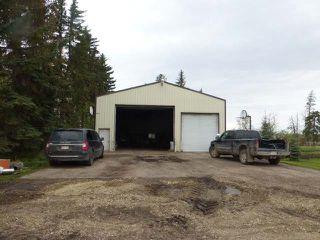 Photo 34: 48354 RR 255: Rural Leduc County House for sale : MLS®# E4198536