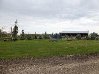 Photo 37: 48354 RR 255: Rural Leduc County House for sale : MLS®# E4198536